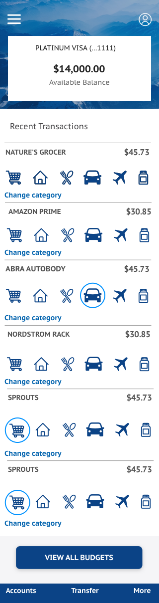 Categoraize transactions Copy.png