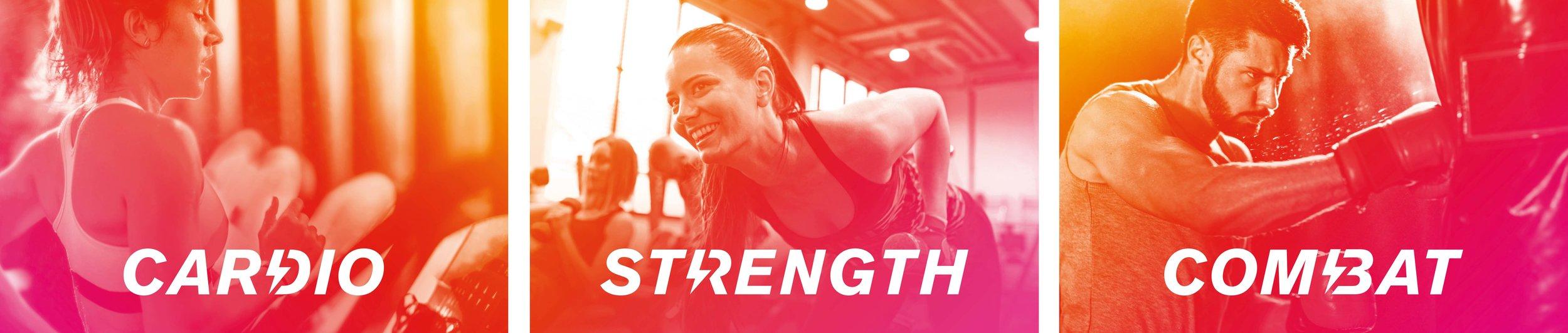 Cardio, strength, combat.jpg