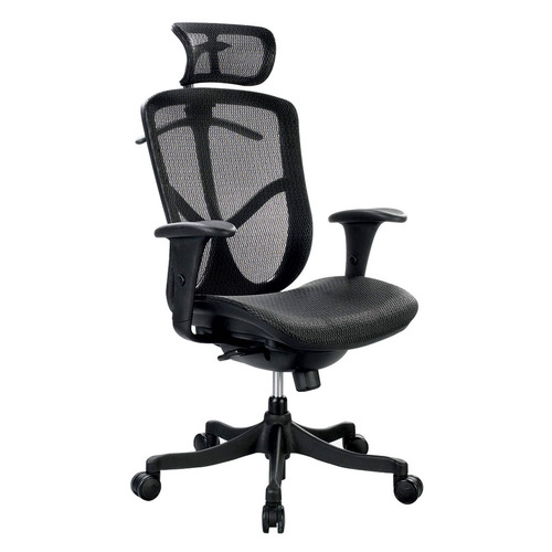 Eurotech Fuzion Basic High-Back Executive Chair   $895