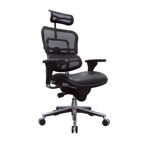 Eurotech ErgoHuman Mid-Back Mesh/Leather Executive Chair   $1,303