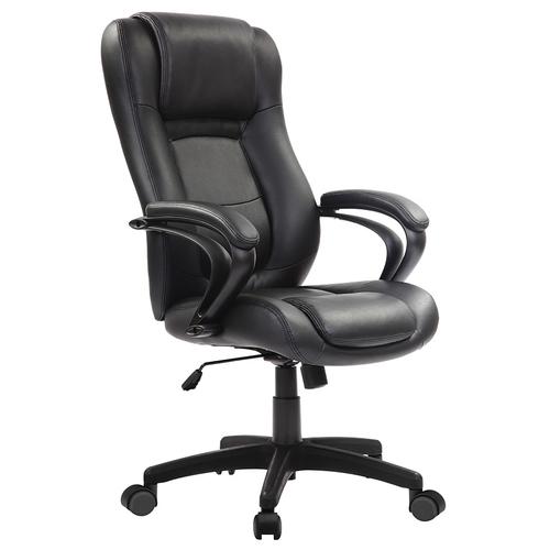 Eurotech Pembroke Leather Executive Chair   $468
