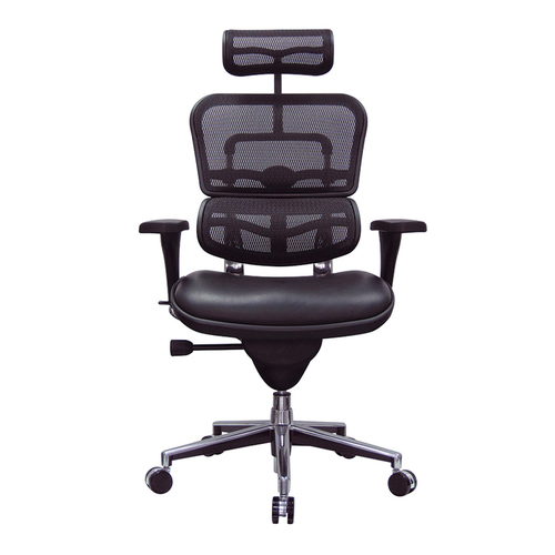 Eurotech Ergohuman Leather Seat & Mesh Back Executive Chair   $1,366