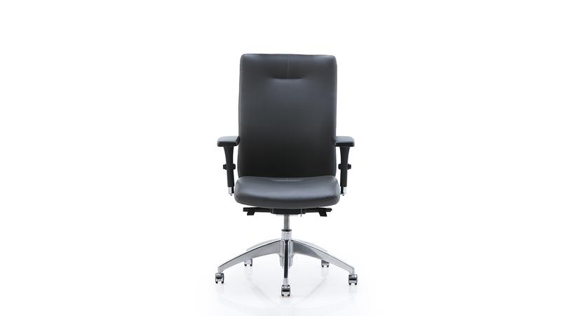 Quick Overview   Eqüs presents a contemporary and very stylish look. Its double curved shell, its adjustable backrest height and backrest angle settings makes it a perfect choice for executive offices and elegant conference rooms. Available with or without a comfortable headrest.