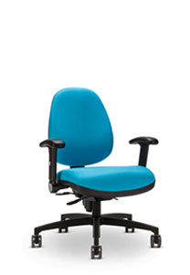 Via Terra   Mid Back Chair