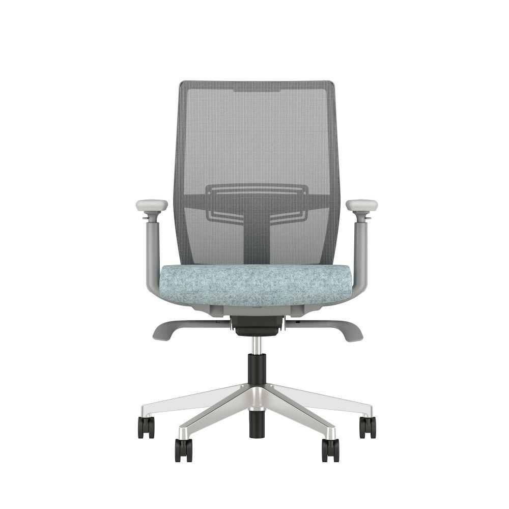 AIS Devons Task Chair