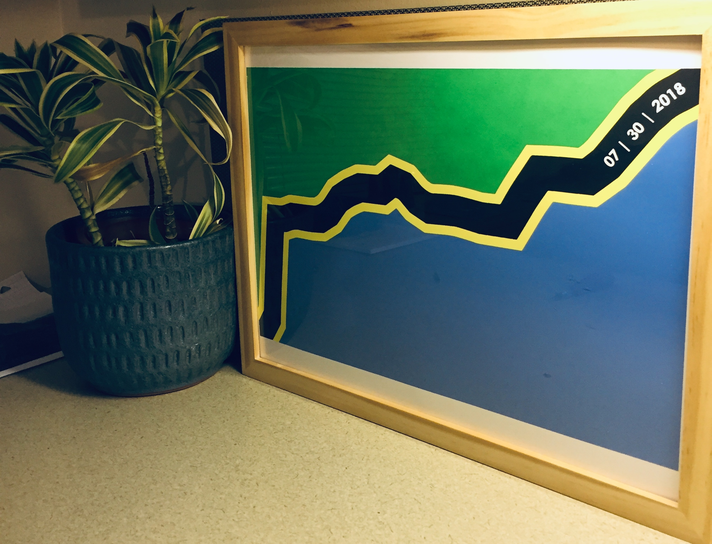 The Print - The final print seeks to replicate the flag of tanzania while replacing the middle stripe with the unique hike signature compiled during the summit.