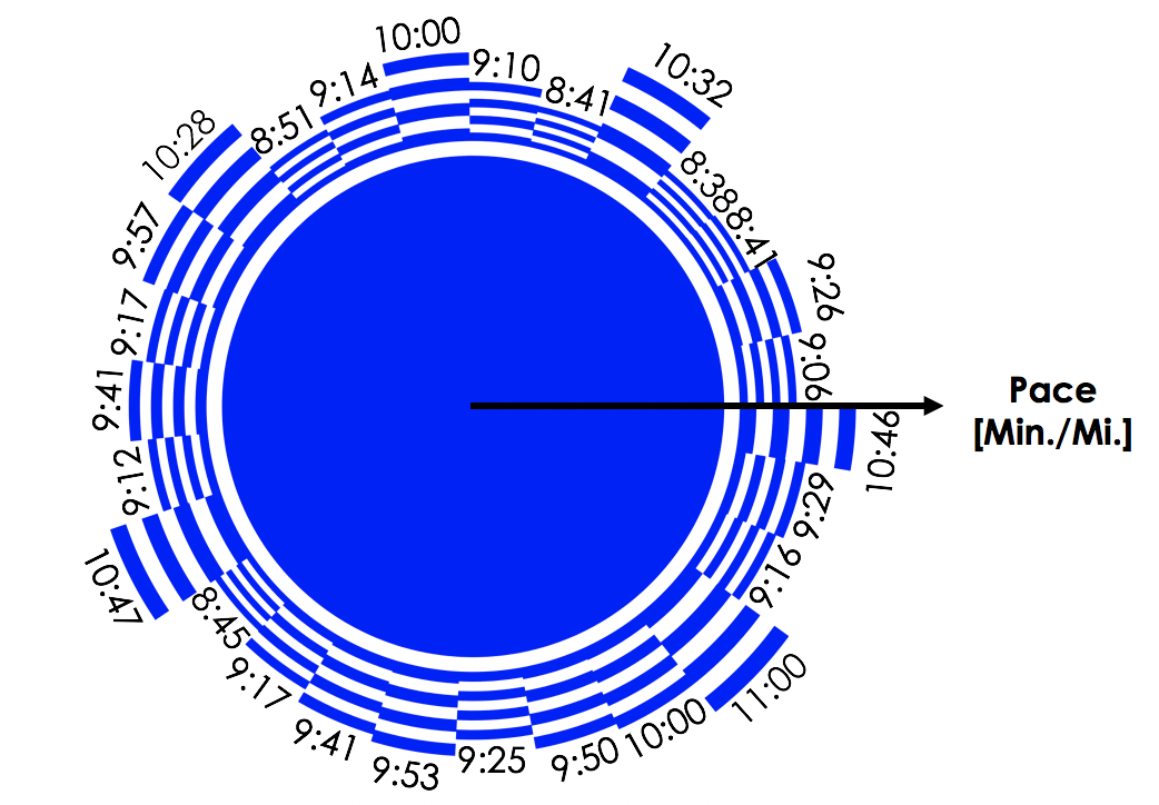 The Data - Using pace data from each mile of the 26.2 mile race, a pie chart is constructed in which the radius of each segment is related to pace.