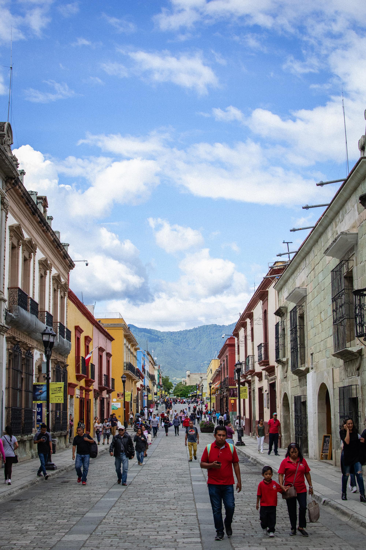 streets_of_oaxaca.jpg