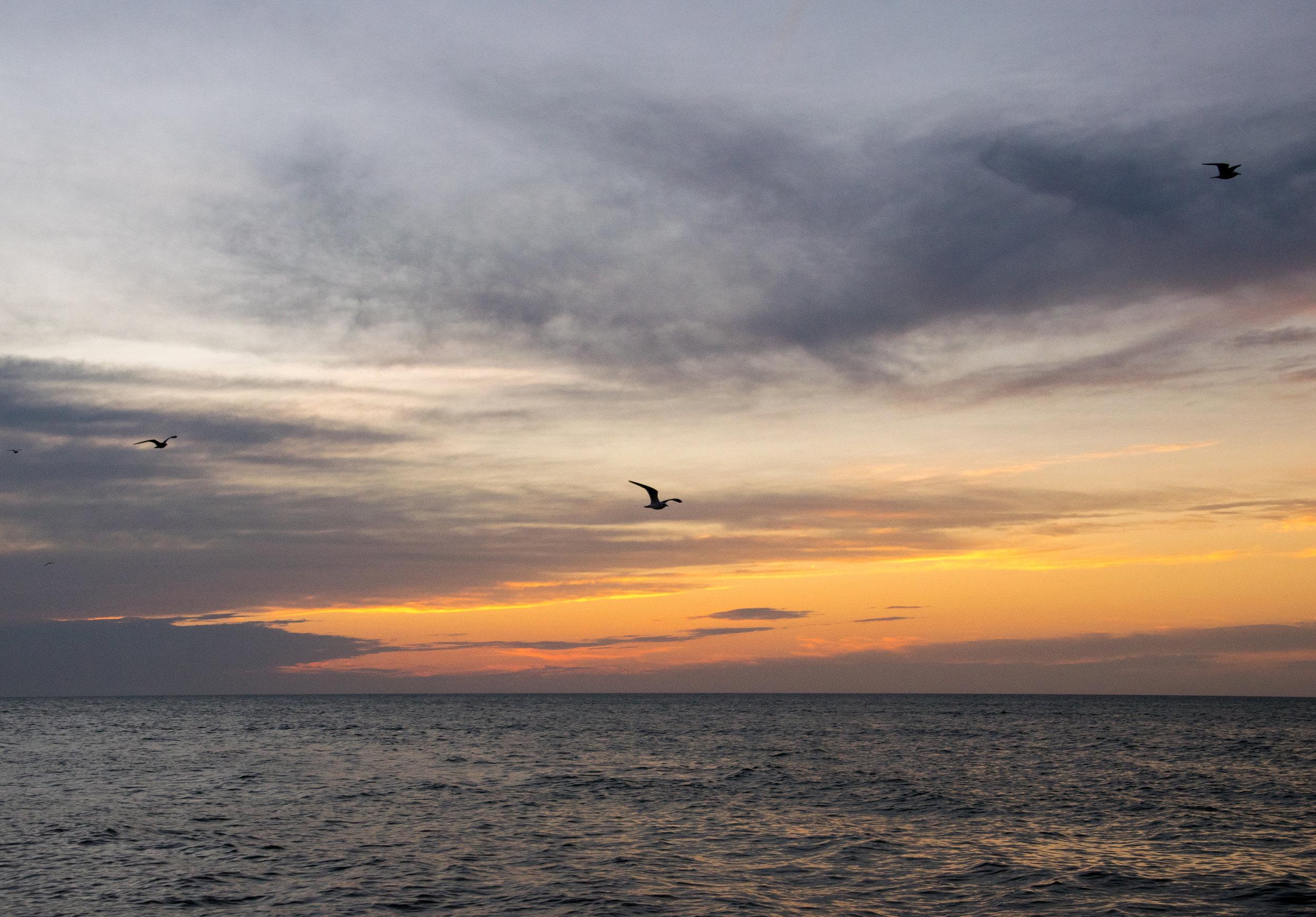 Celestun Beach at Sunset