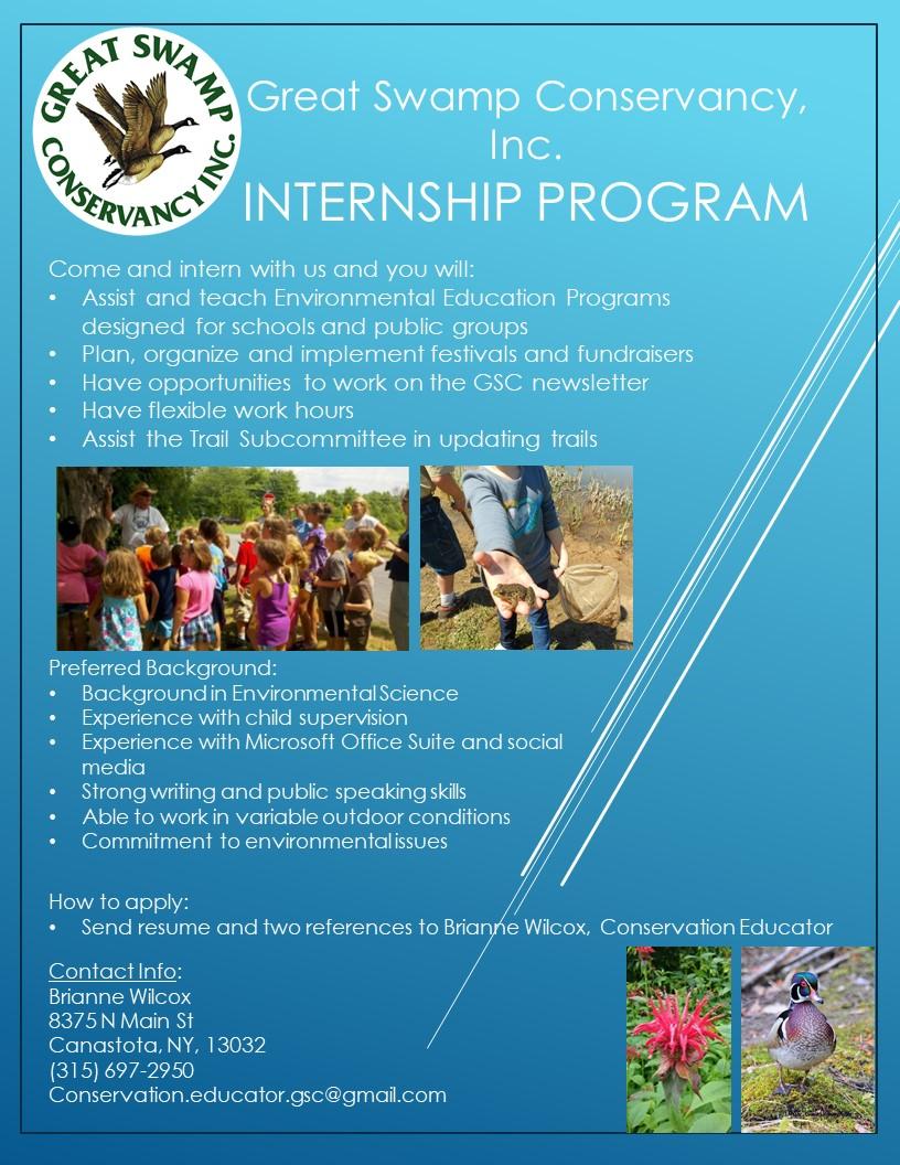 Student Internship Flyer 2019.jpg