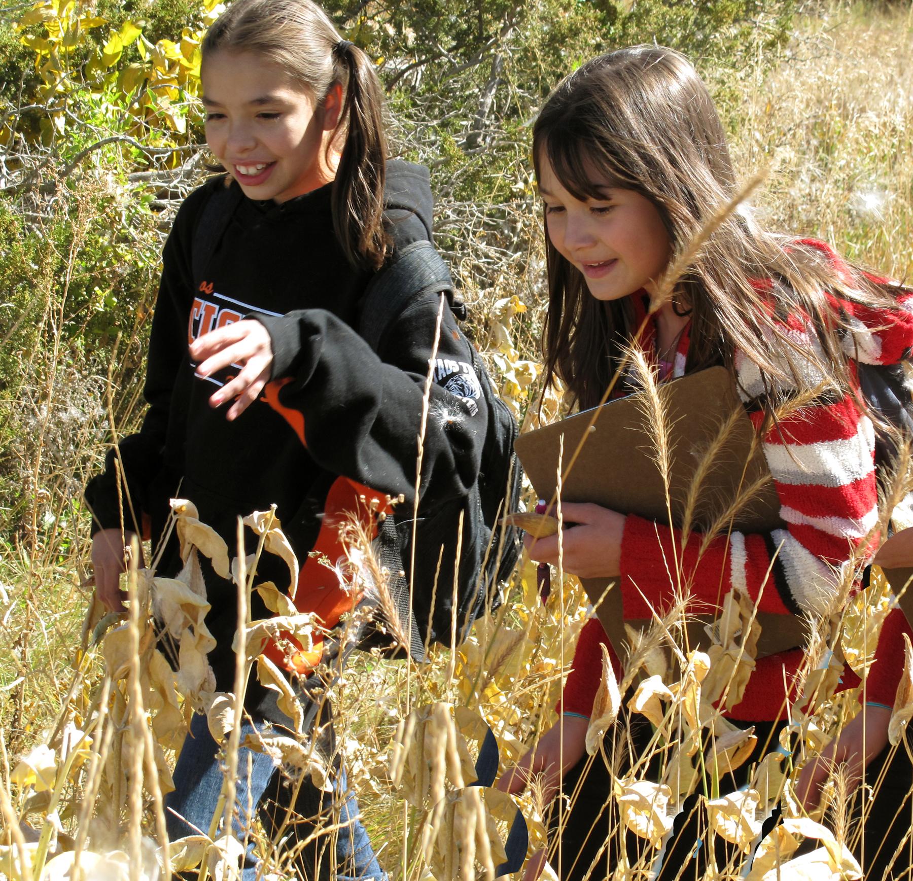 Joy in the Meadow.jpg