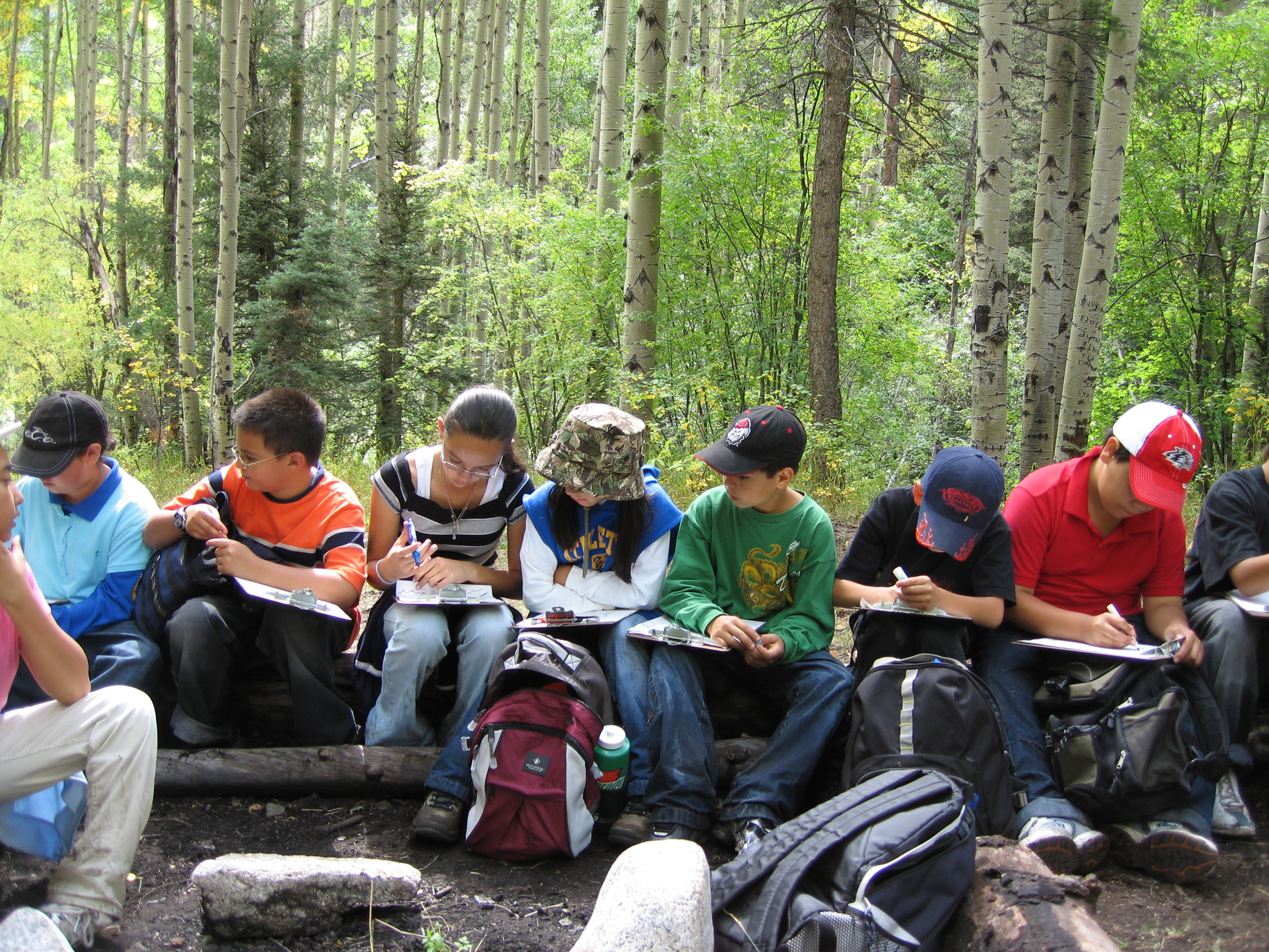 Students compile forest measurements on forest fire ecology day.JPG