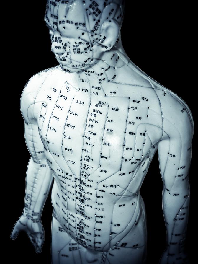 acu body.jpg
