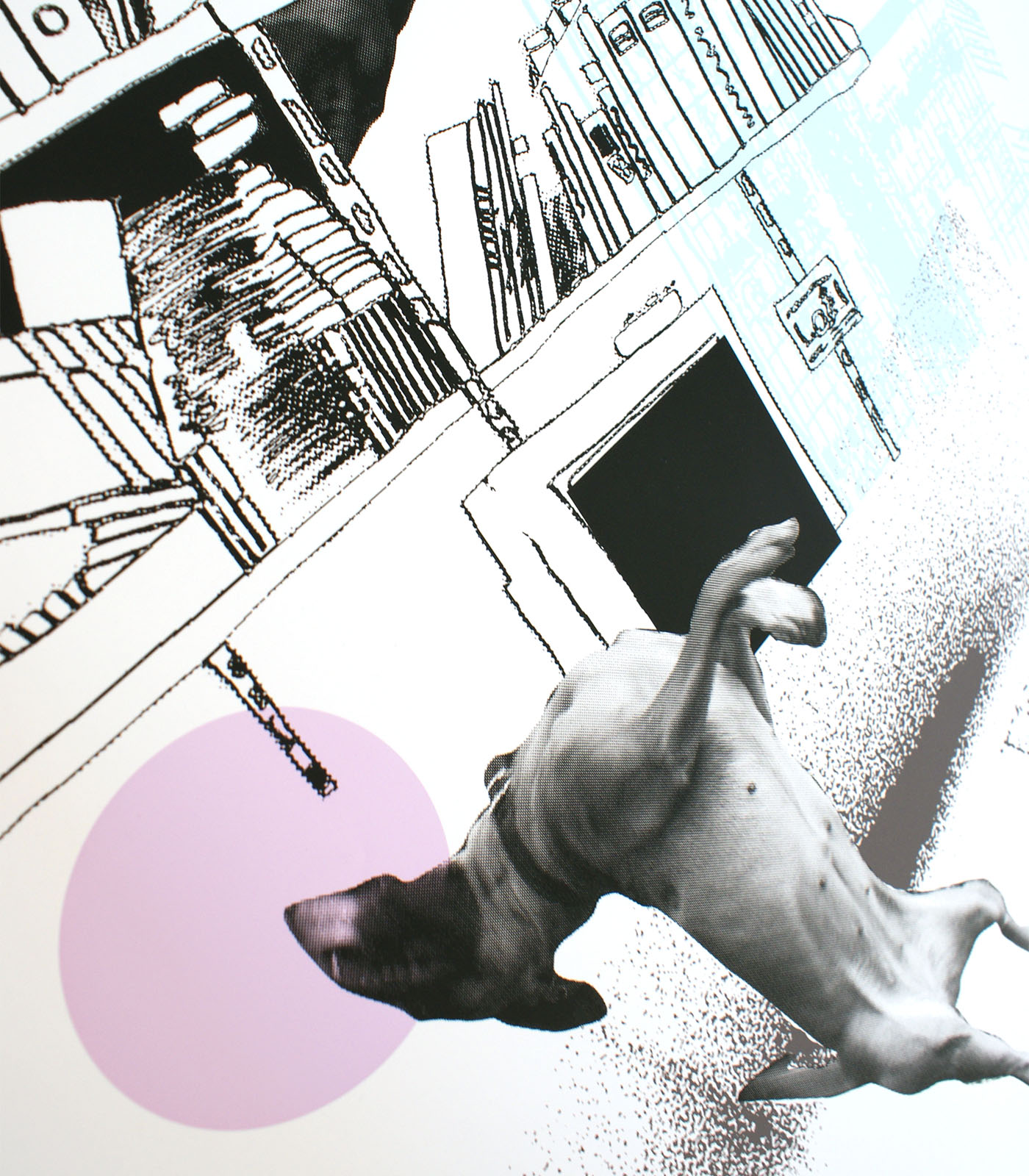 jumping_dog_detail1.jpg