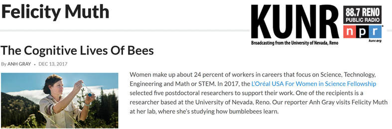 interview on kunr - The cognitive lives of bees