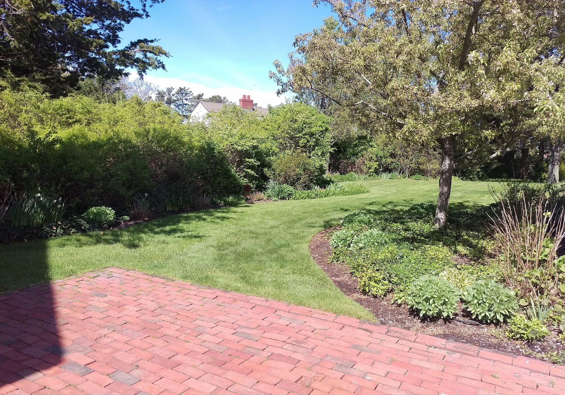 Upper Cape Garden Restoration (Before)