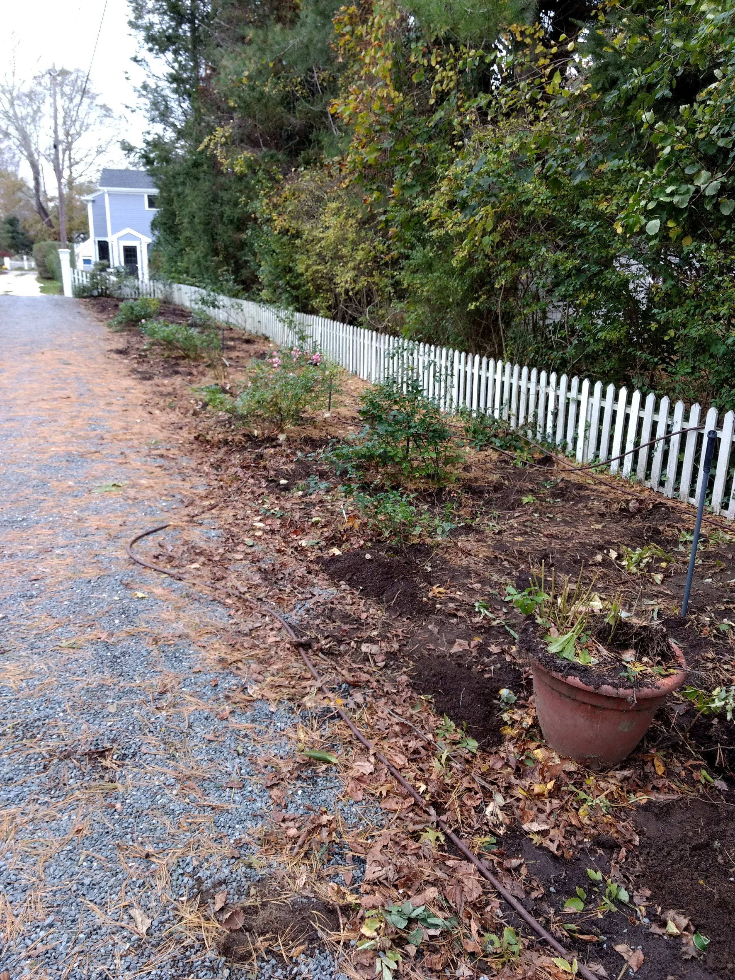 Driveway Border Bed (Before)