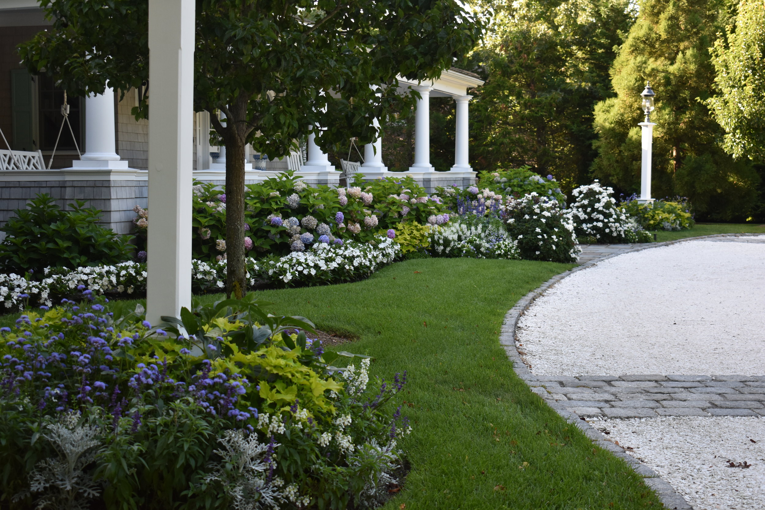 Oyster Island Front Garden