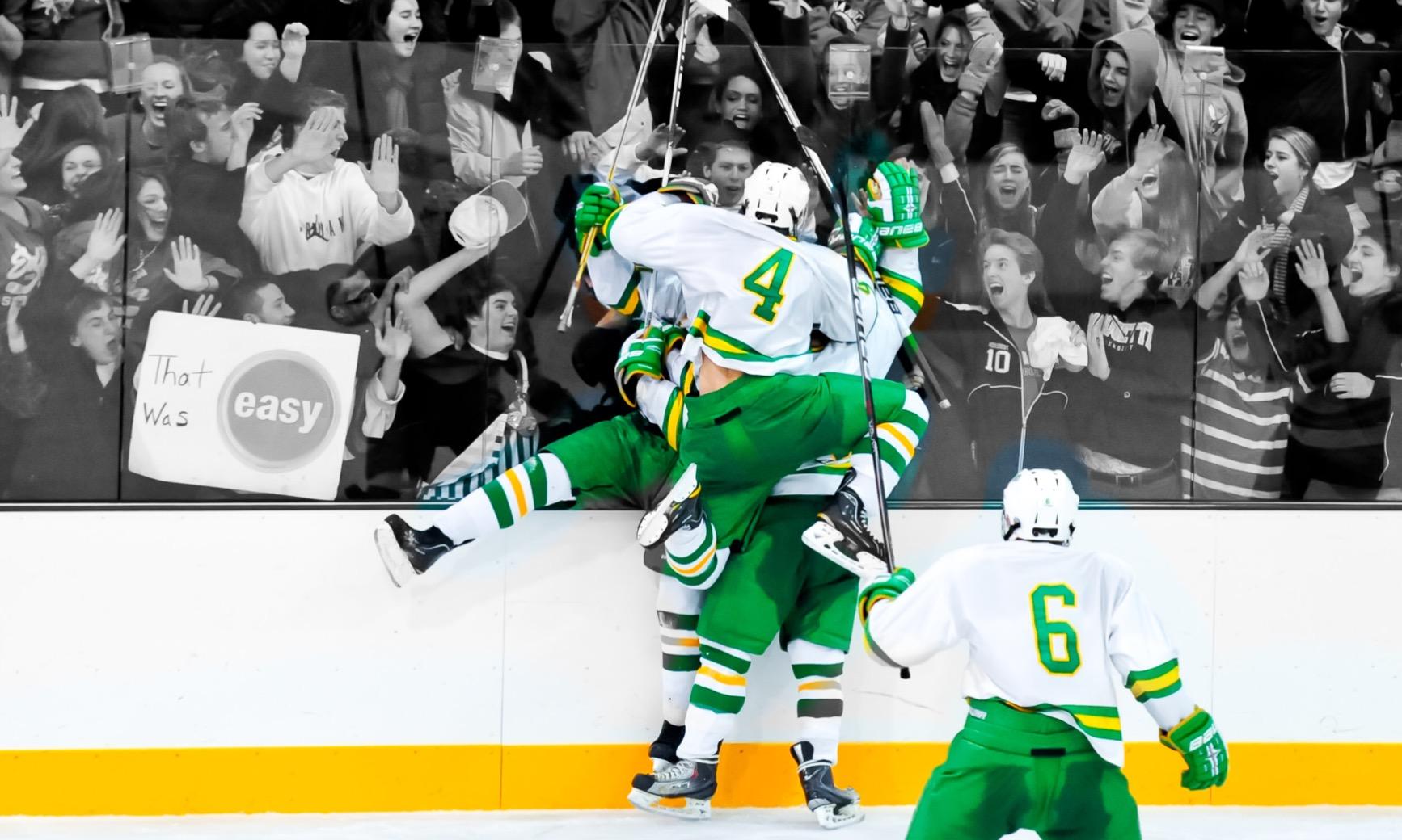 hockeycelebration.JPG