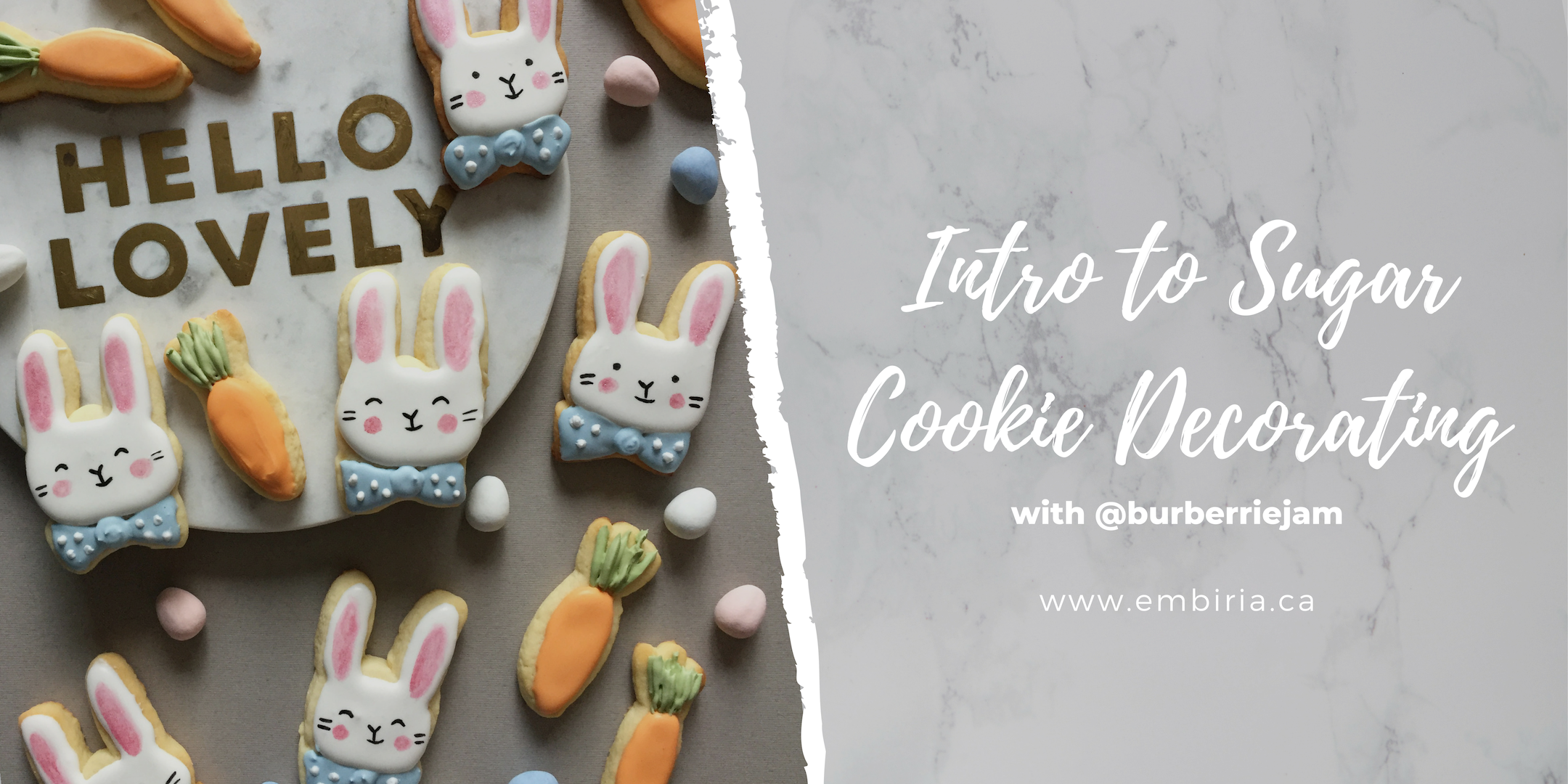 cookie-decorating-classes-toronto-embiria.png