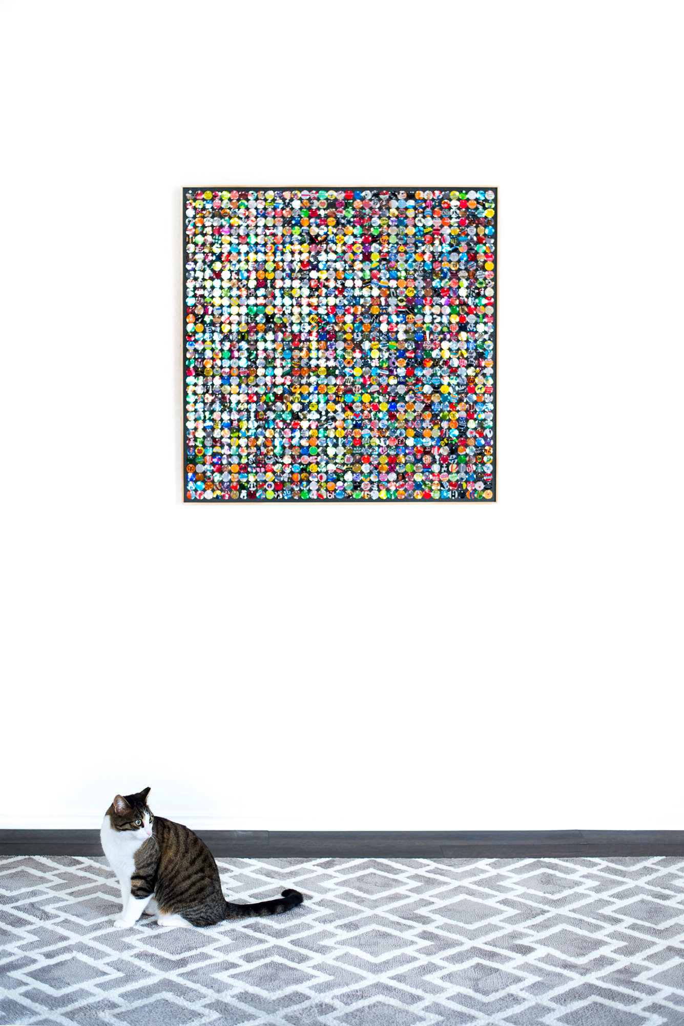 hannah-nemo-beer-can-recycled-moving-mosaic-wall-cat-single-36x36.jpg