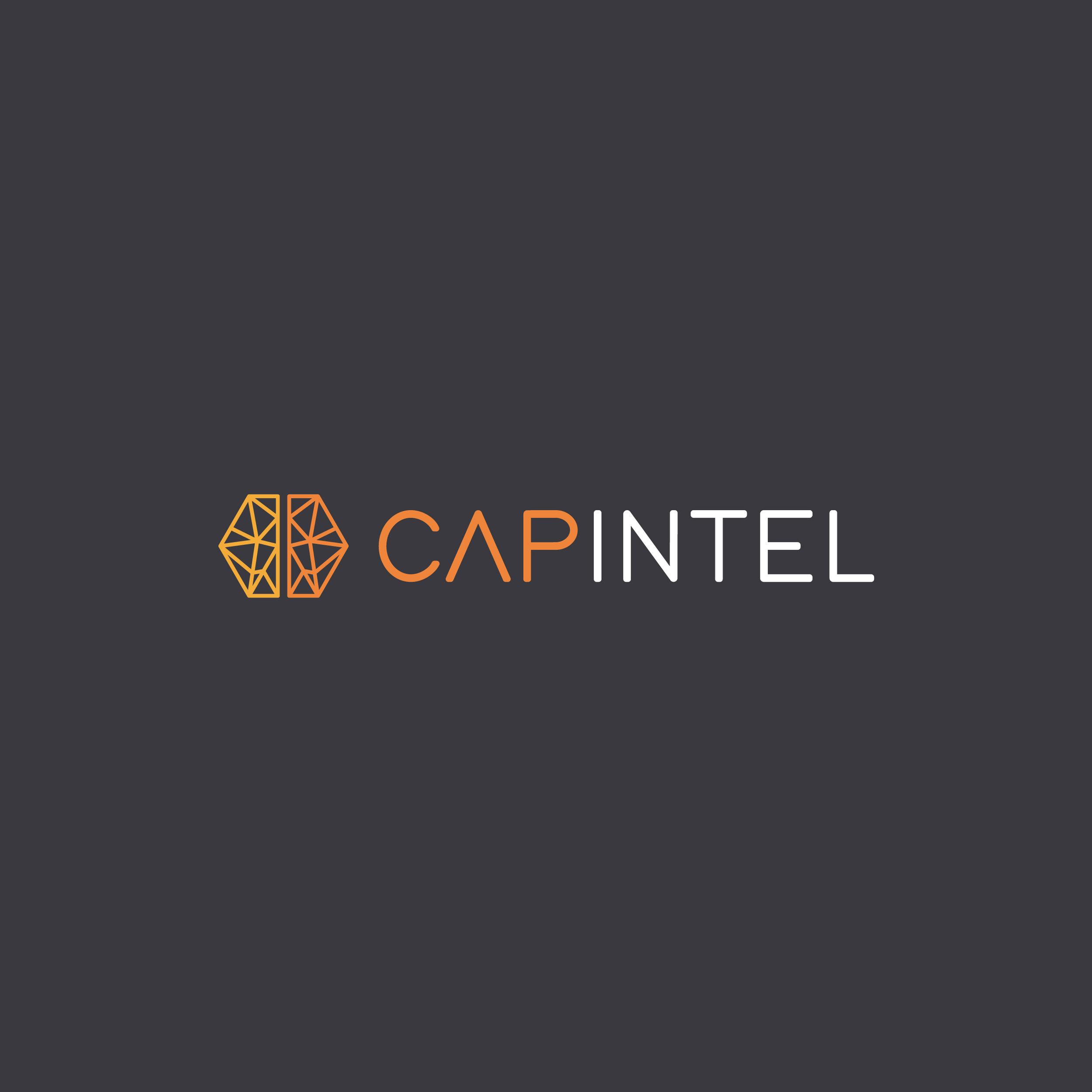 capintel-thumbnail.jpg