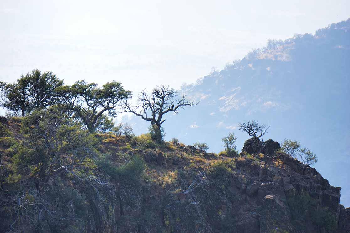 Steen-Mountains-Gallery-05.jpg