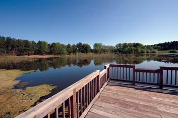 McDuffie Public Fishing Area.jpg