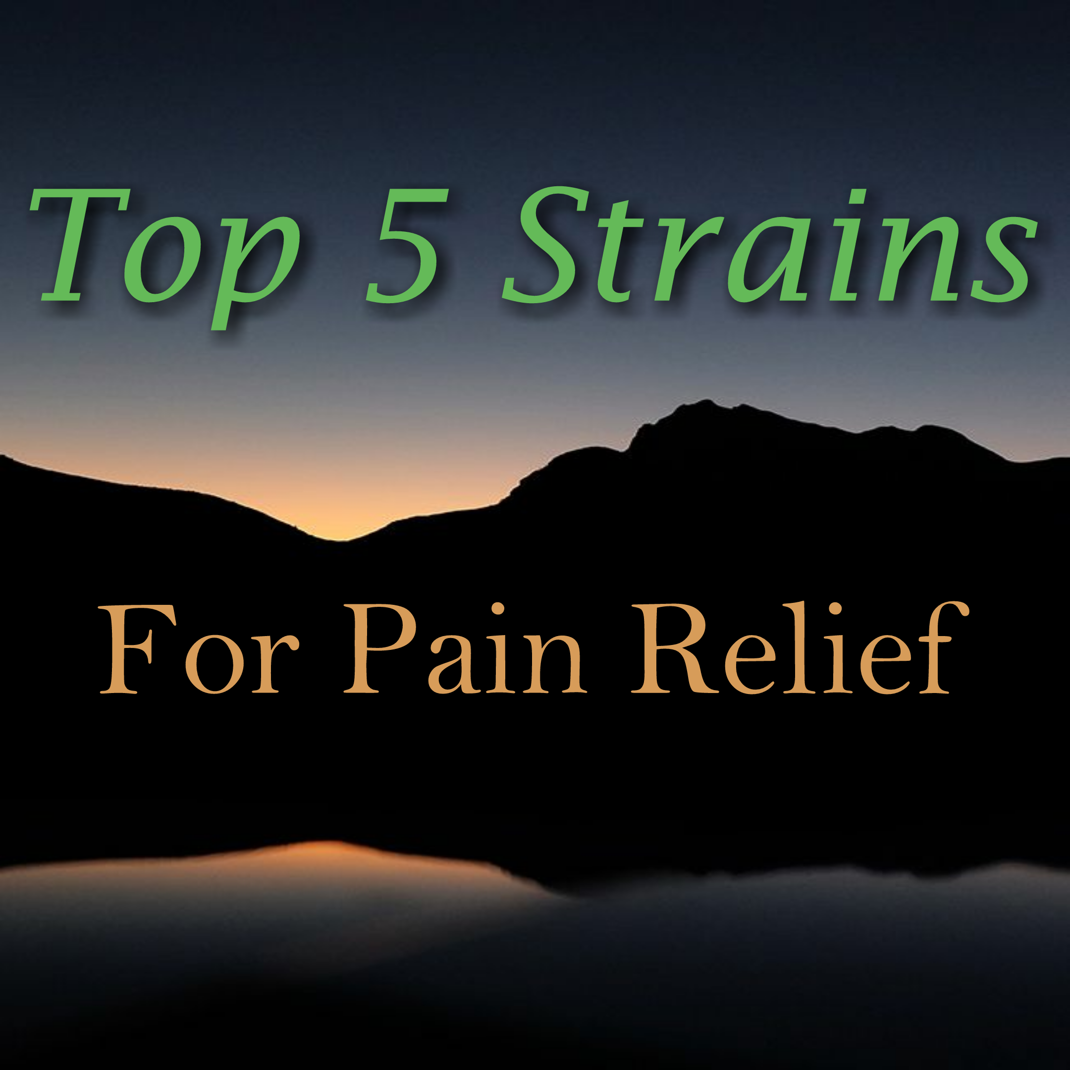 Top 5 Strains For Pain Relief
