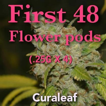 First 48 -  Curaleaf