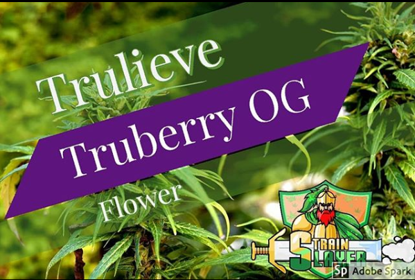 truberryflo.PNG