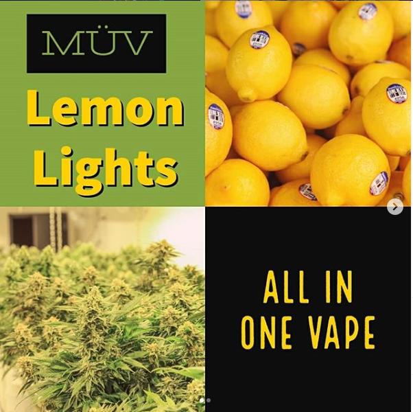 lemon lights.PNG