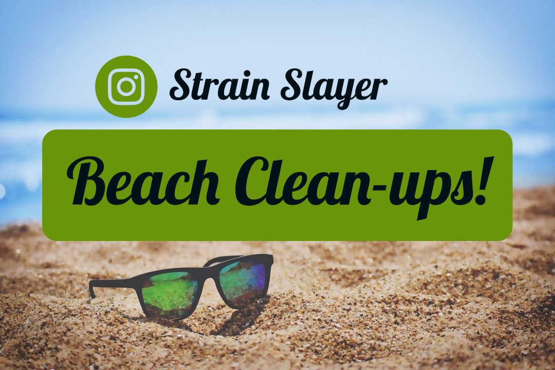 Strain Slayers Beach CLean Ups