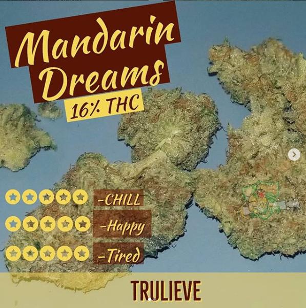 manderine dreams.PNG