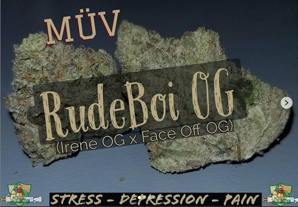 rudeboi.PNG