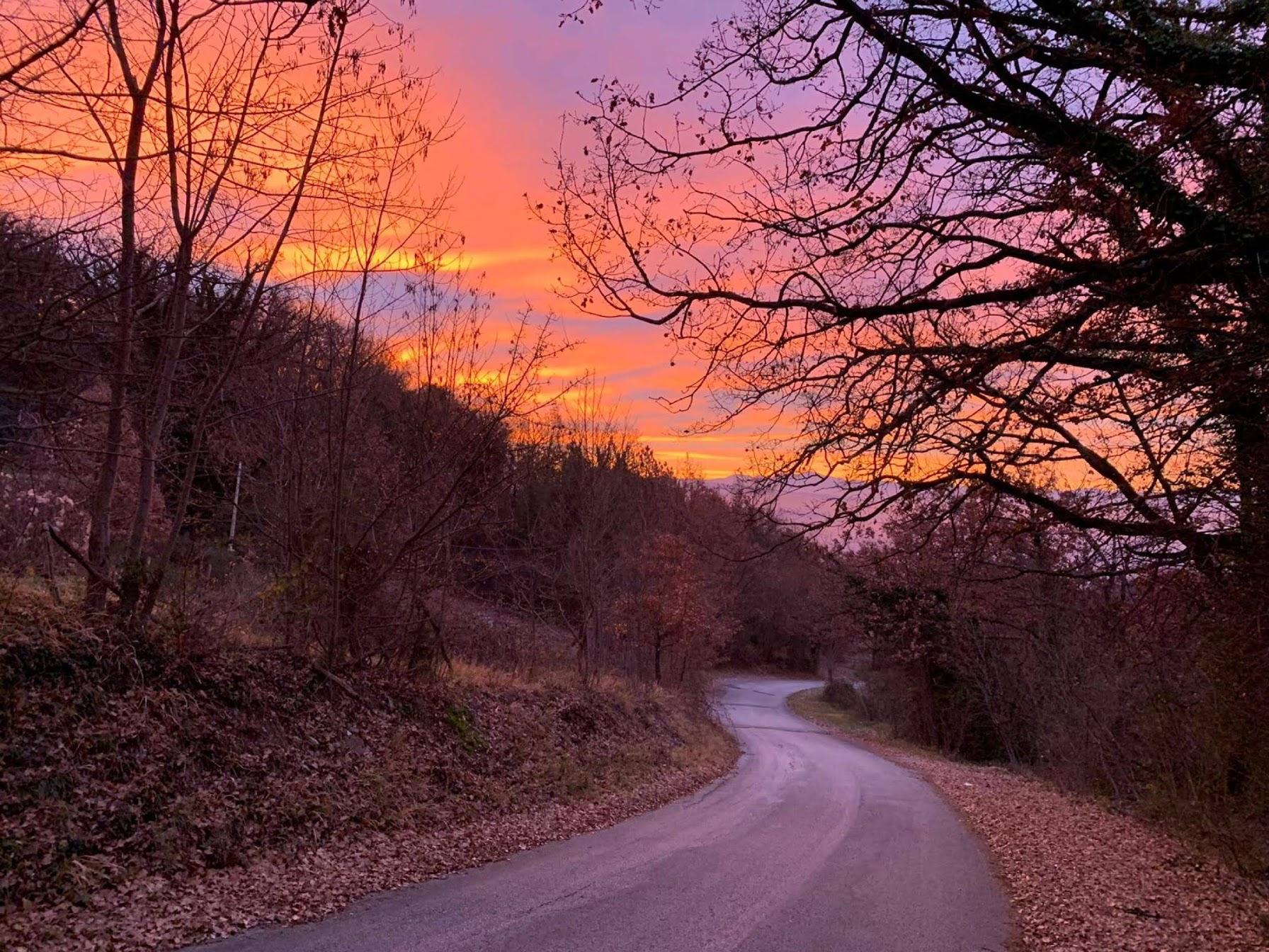 sunrise moarning.jpg