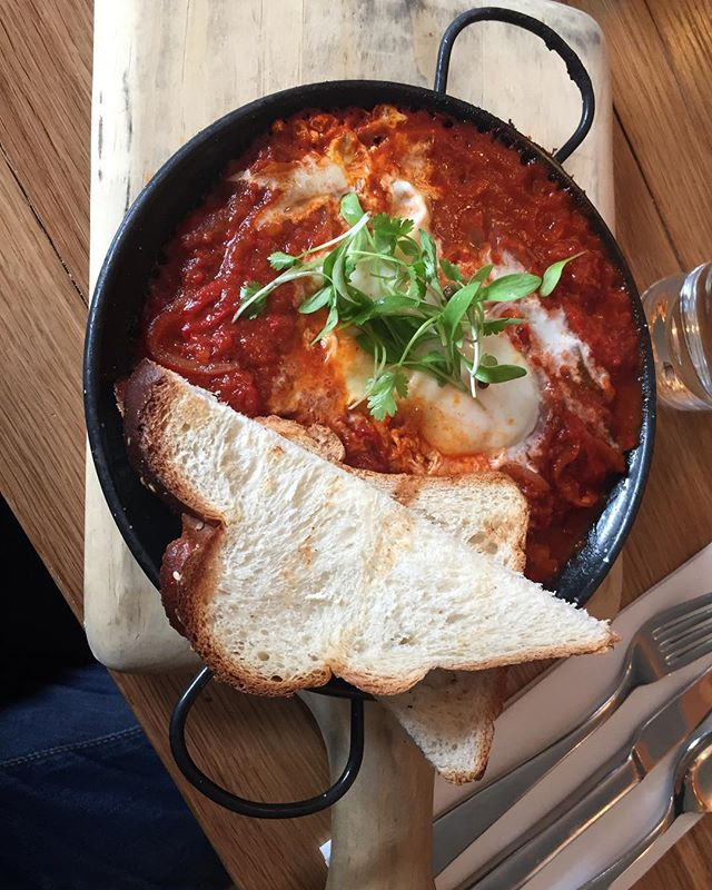 Finally made it to @balaboostanyc for an amazing modern Israeli brunch. Loved the Shakshuka and totally soaked up every bit of that lovely tomato sauce with my challah. Thankfully my date let me try her Chilaquiles, which was also fantastic with the right about of heat and tasty pickled onions. She also ordered the Shiksa to drink, vodka, pomegranate, rose water, ginger and lime which was apropos considering she is one herself. Might not tell my Jewish dad about the girl but will definitely tell him about the restaurant. ⠀⠀⠀⠀⠀⠀ ⠀⠀ ⠀⠀⠀⠀⠀⠀ ⠀⠀⠀ ⠀⠀⠀⠀ ⠀⠀⠀⠀⠀⠀ ⠀⠀ ⠀⠀⠀⠀⠀⠀ ⠀⠀⠀ ⠀⠀⠀⠀ ⠀⠀⠀⠀⠀⠀ ⠀⠀ ⠀⠀⠀⠀⠀⠀ ⠀⠀⠀ ⠀⠀⠀⠀ ⠀⠀⠀⠀⠀⠀ ⠀⠀ ⠀⠀⠀⠀⠀⠀ ⠀⠀⠀ ⠀⠀⠀⠀ ⠀⠀⠀⠀⠀⠀ ⠀⠀ ⠀⠀⠀⠀⠀⠀ ⠀⠀⠀ ⠀⠀⠀⠀ ⠀⠀⠀⠀⠀⠀ ⠀⠀ ⠀⠀⠀⠀⠀⠀ ⠀⠀⠀ ⠀⠀⠀⠀ #mediterraneanfood #israelifood #israel #newyorkcity #newyork #nyc #westvillage #shiksa #shakshuka #chilaquiles #challah #eggs #brunch #yiddish #balaboosta