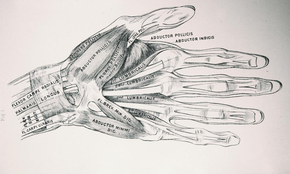Vintage hand drawing - edited.jpg