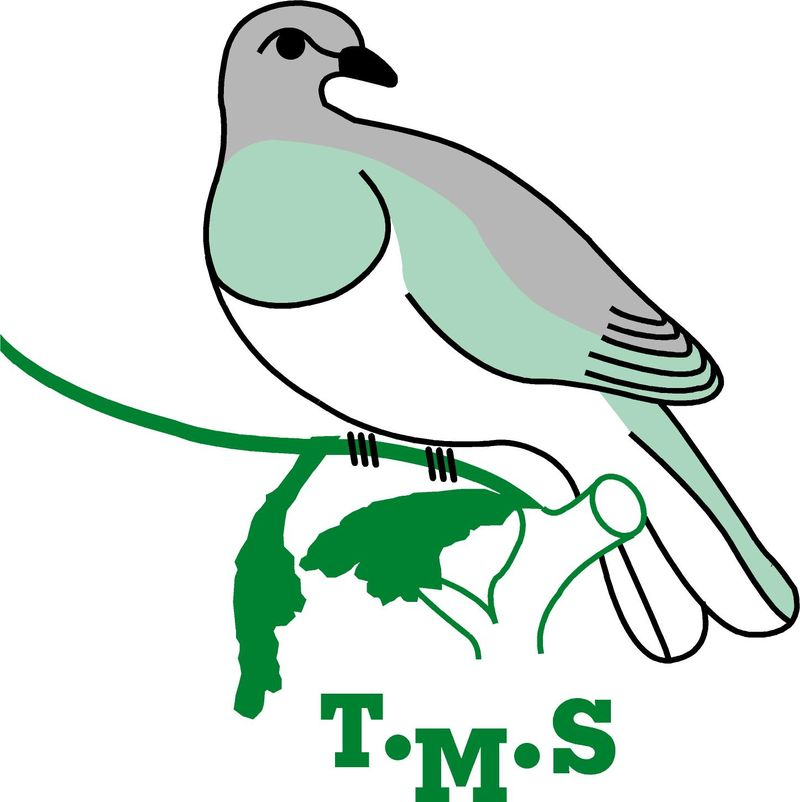 The Kereru (native pigeon) is our mascot as it lives in the native bush that surrounds our school and eats the berry of the Miro tree.