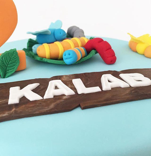 Hukuna matuta .. it means no worries!! Lots of bugs and slimy grubs for Kalab's Birthday cake recently 🐛🐛 #eatoncakes #cakes #cupcakes #cookies #handmade #colourful #hakunamatata #creepycrawlies #thelionkingcake #macarthurnsw #lovelocal