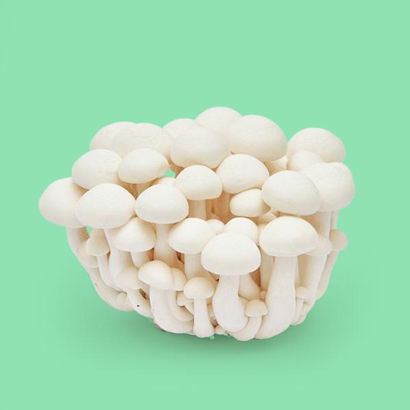 white-beech-mushroom.jpg