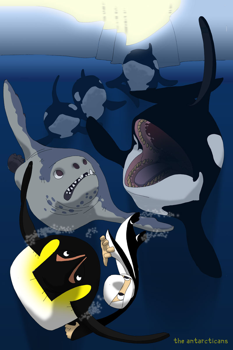 antarcticans-orca.jpg