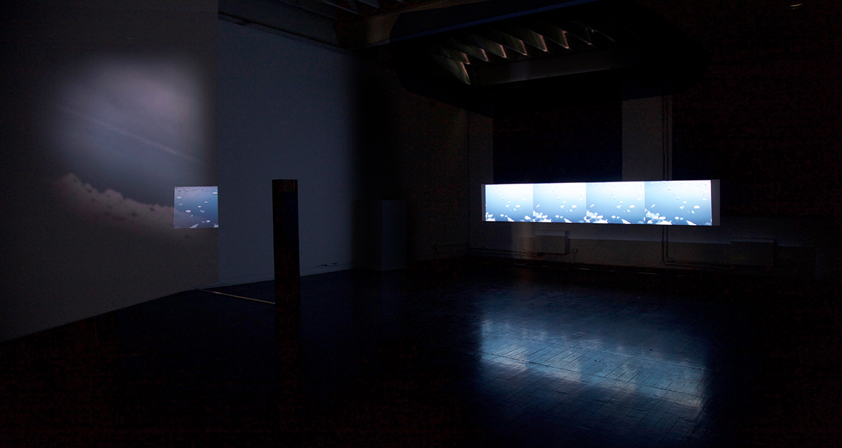 Leela Schauble, graduate show installation 2016.jpg