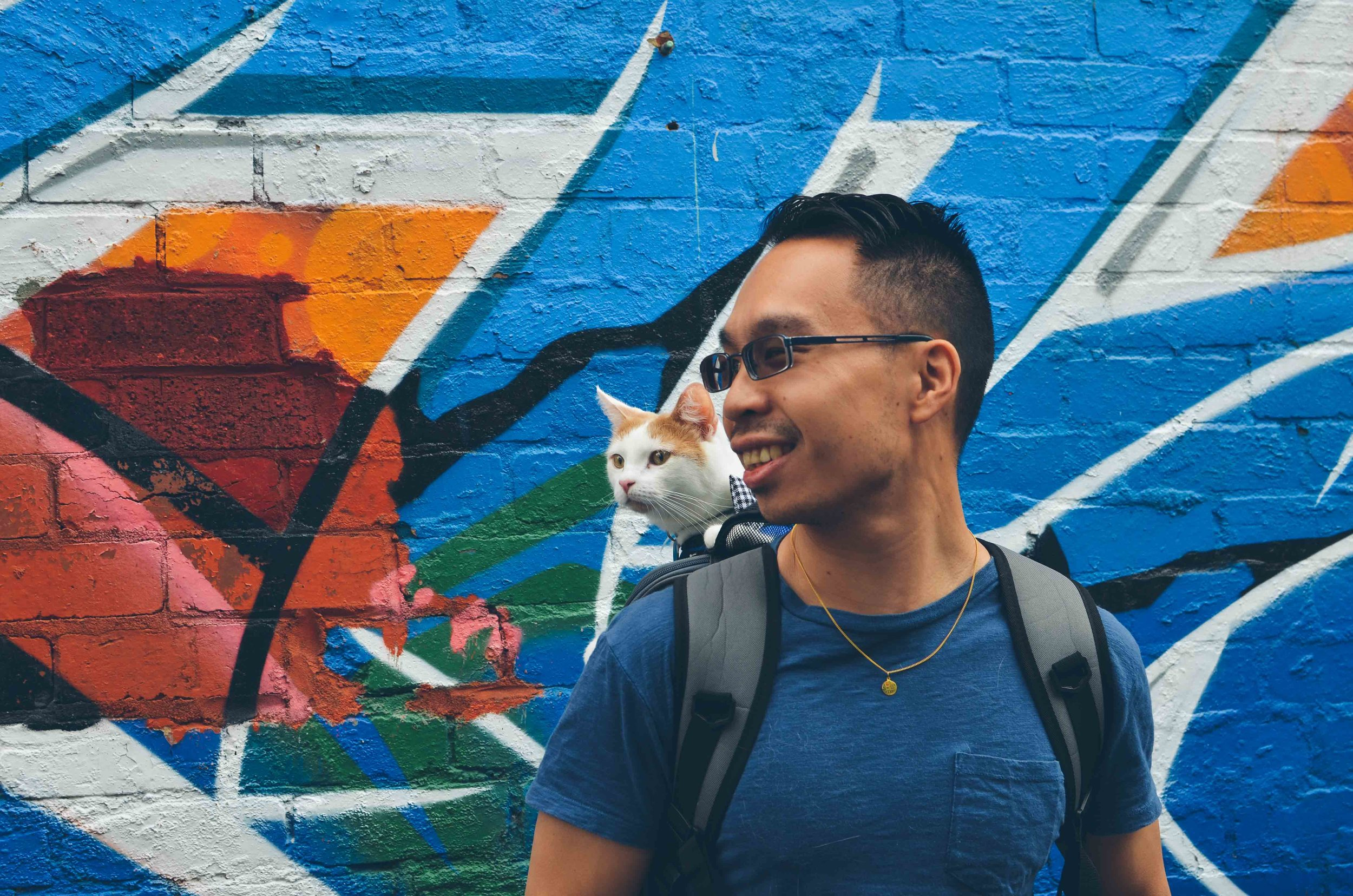 cat with cat dad and graffiti