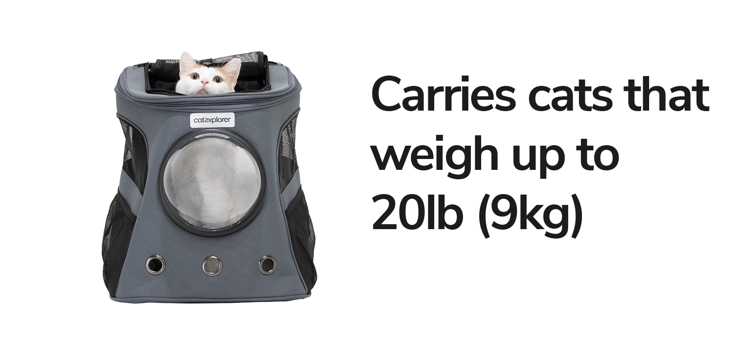 Carries-cats-that-weigh-up-to-20lbs-9kg.png