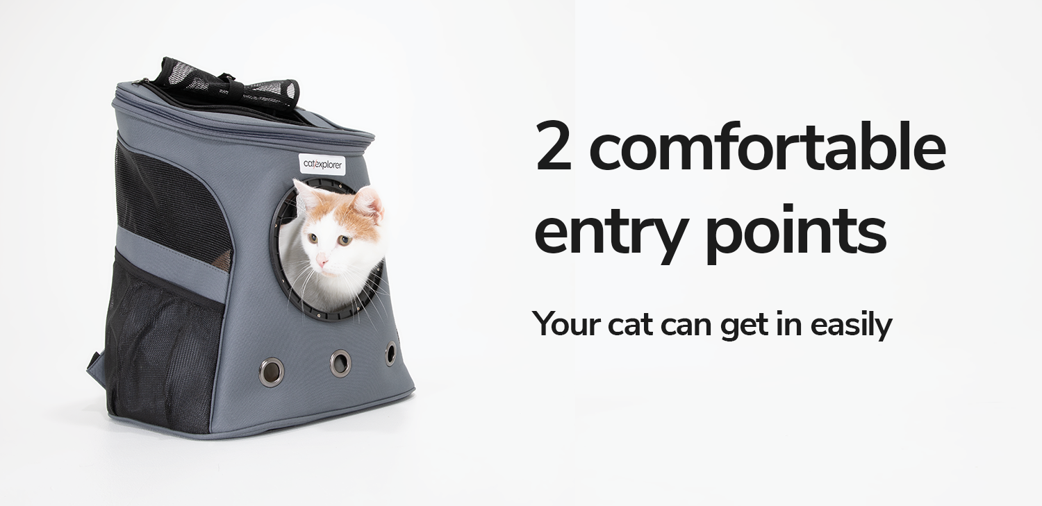 2-comfortable-entry-points-for-your-cat.png