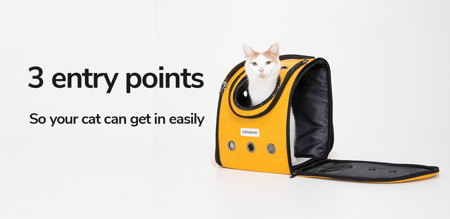 3-entry-points-so-your-cat-can-get-on-easily.png