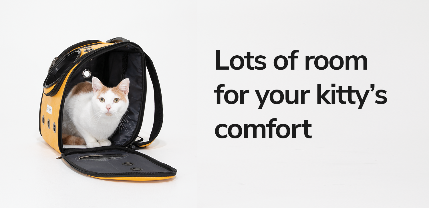room-for-cat-to-sit-comfortably.png