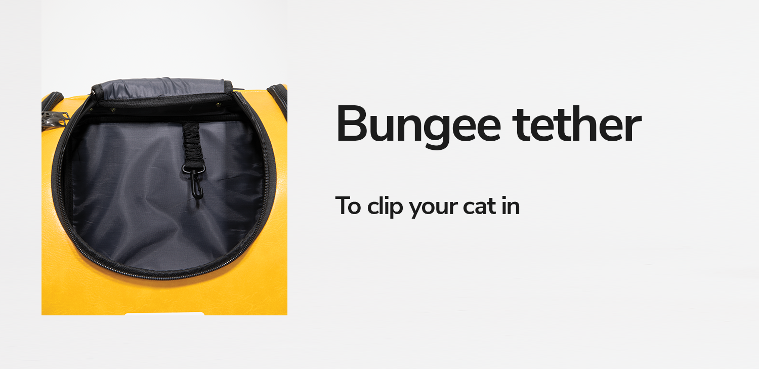bungee-tether-pioneer-cat-backpack-explorer.png