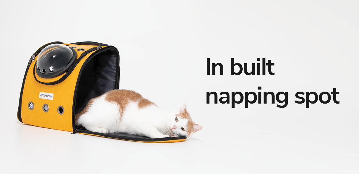 cat-napping-spot-cat-backpack-pioneer-explorer.png